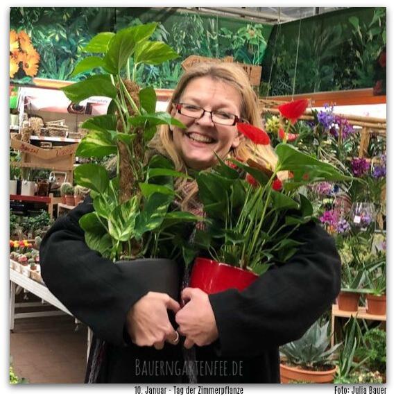 Habt eure Pflanzen lieb! Der 10. Januar ist in jedem Jahr der Tag der Zimmerpflanze.