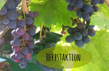 Foto-Herbstaktion