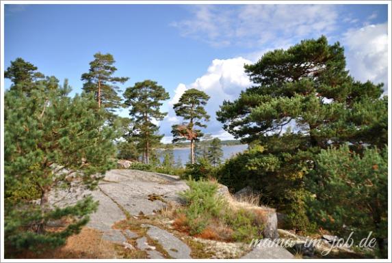 Tanumshede / Raftötången.. Foto: Petra A. Bauer 2014