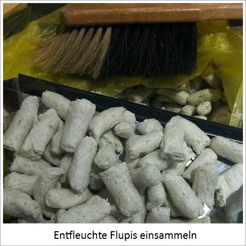 """Aufgeschäumte Papier-Flips (""""Flupis"""")"""