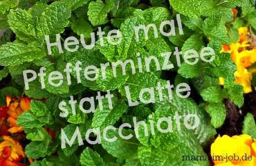 Pfefferminztee statt Latte Macchiato zur Unterstützung des 5:2 Intervallfastens